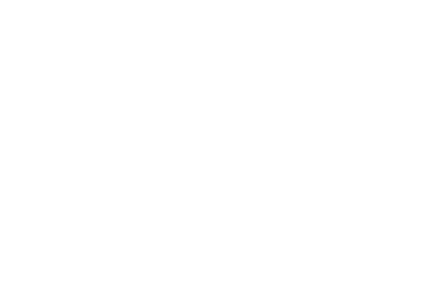 Visual of a Person holding Cleaning Equipment
